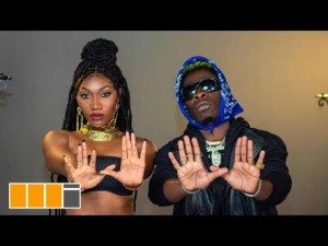 VIDEO: Wendy Shay Ft. Shatta Wale - H. I. T (Haters In Tears) Mp4 Download