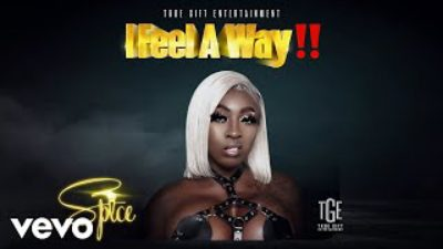 Spice  I Feel A Way  mp3 download