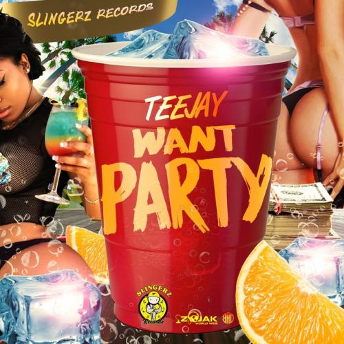 Teejay Want Party mp3 download