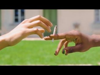 VIDEO: Pappy Kojo Ft. Phyno & RJZ - Green Means Go
