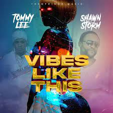 Tommy Lee Sparta Vibes Like This Ft. Shawn Storm mp3 download