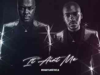 Mshayi Ft. Mr Thela It Ain't Me (Bootleg) mp3 download
