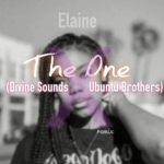 Divine Sounds & Ubuntu Brothers The One (Elaine Remix) mp3 download