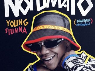 Young Stunna  iRecipe ft. Kabza De Small & Nkulee 501 mp3 download